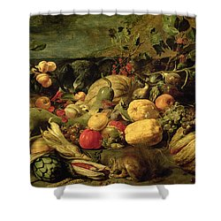 Still Life Of Fruits And Vegetables Shower Curtain by Frans Snyders