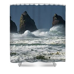 Storm Warning Shower Curtain by Bob Christopher