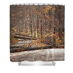Stormy Autumn Shower Curtain by Karol Livote