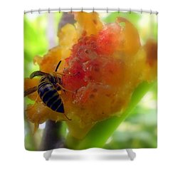 Succulent Fig Shower Curtain by Karen Wiles