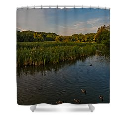 Summer Duck Pond Shower Curtain by Jiayin Ma