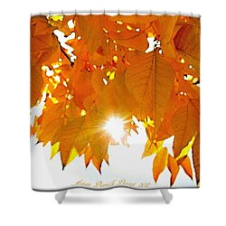 Sun Kissed  Deciduous Shower Curtain by Danielle  Parent
