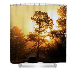Sunrise Shower Curtain by Karen Harrison