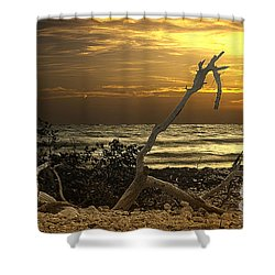 Sunset West II Shower Curtain by Bruce Bain