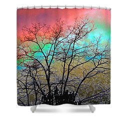 Surreal Winter Sky Shower Curtain by Will Borden