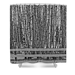 Susys Ranch  Shower Curtain by Jerry Cordeiro
