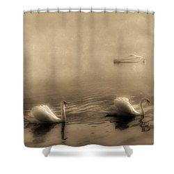 Swans Shower Curtain by Joana Kruse