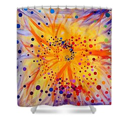 Symmetry Breaking Shower Curtain by Regina Valluzzi