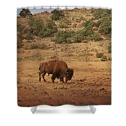 Taking A Break Shower Curtain by Tamyra Ayles