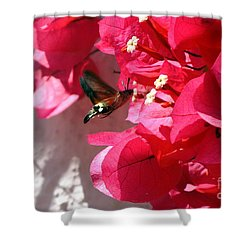 Taking The Nectar Shower Curtain by John Chatterley