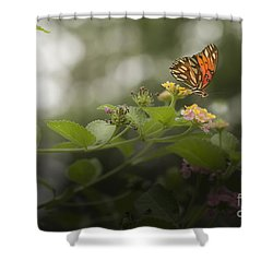 Talk To Me Shower Curtain by Kim Henderson