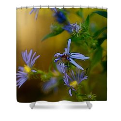 Tangled Up In Blue Shower Curtain by Susan Capuano