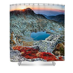 Tear Drops Shower Curtain by Evgeni Dinev