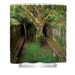 Temple Overgrown By The Jungle Shower Curtain by Artur Bogacki