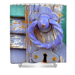 Terrace Door Shower Curtain by Lainie Wrightson