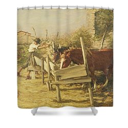 The Appian Way Shower Curtain by Henry Herbert La Thangue
