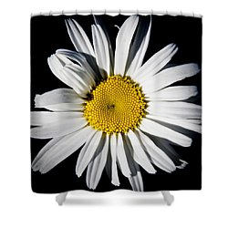 The Daisy Shower Curtain by David Patterson