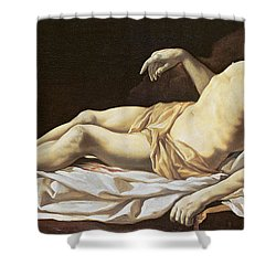 The Dead Christ Shower Curtain by Charles Le Brun