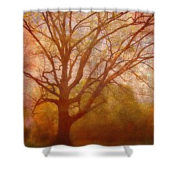 The Fairy Tree Shower Curtain by Brett Pfister