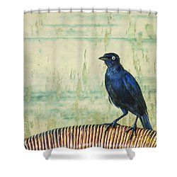 The Grackle Shower Curtain by John Edwards