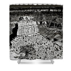 The Grand Canyon Bw Shower Curtain by Bob and Nadine Johnston