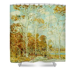 The Hawk's Nest Shower Curtain by Childe Hassam