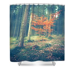 The Little Red Tree - Vintage Shower Curtain by Hannes Cmarits