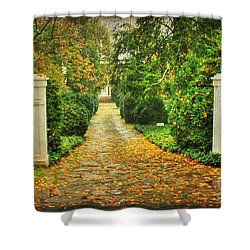 The Long Lonely Path Shower Curtain by Darren Fisher