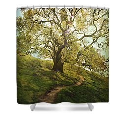 The Path To Brighter Days Shower Curtain by Laurie Search