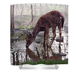 The Pause Shower Curtain by Bill Stephens