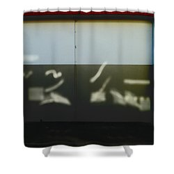 The Picasso Light Shower Curtain by Steve Taylor
