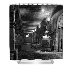 The Tequilera No. 2 Shower Curtain by Lynn Palmer