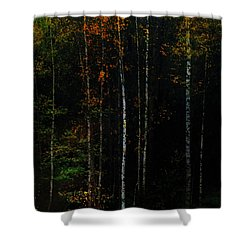 The Way To Glow From The Darkness Shower Curtain by Jenny Rainbow