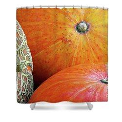 Three Pumpkins Shower Curtain by Carlos Caetano