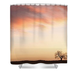 Three Trees Sunrise Sky Landscape Shower Curtain by James BO  Insogna