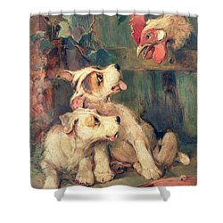 Three's A Crowd Shower Curtain by Philip Eustace Stretton