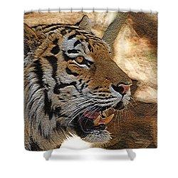Tiger De Shower Curtain by Ernie Echols