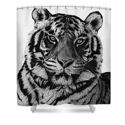 Tiger Shower Curtain by Jyvonne Inman