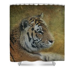 Tigerlily Shower Curtain by Claudia Moeckel