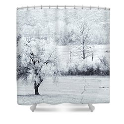 Tracks In The Frost Shower Curtain by Mike  Dawson