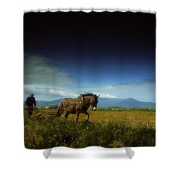 Traditional Harrowing, Castlegregory Shower Curtain by The Irish Image Collection