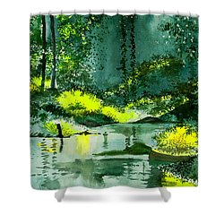 Tranquil 1 Shower Curtain by Anil Nene