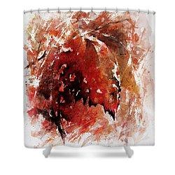 Transition Shower Curtain by Rachel Christine Nowicki