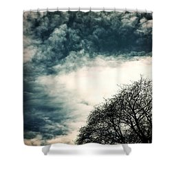 Tree Crown Shower Curtain by Joana Kruse