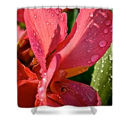 Tropical Rose Canna Lily Shower Curtain by Susan Herber