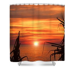 Tropical Sunset V6  Shower Curtain by Douglas Barnard