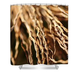 Twigs Shower Curtain by Cheryl Young