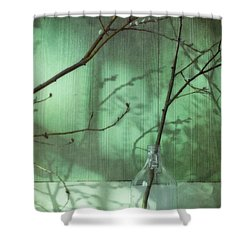 Twigs Shadows And An Empty Beer Jug Shower Curtain by Priska Wettstein