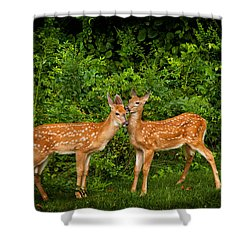 Twins Shower Curtain by Karol Livote