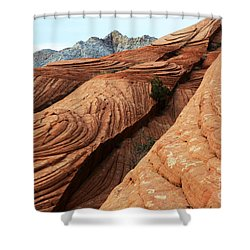 Twisted Landscape Shower Curtain by Bob Christopher